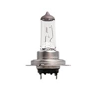 H7 Autolampe